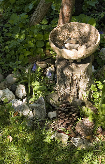 Bowl with stones on a log near a tree