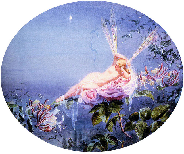 Fairy lounging on flower, gazing at the evening star