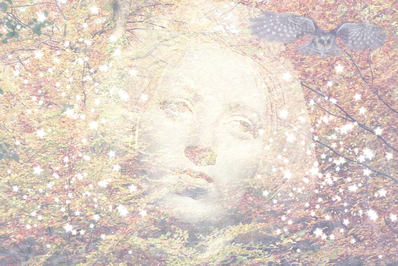 Woman's face among autumn leaves and flying owl