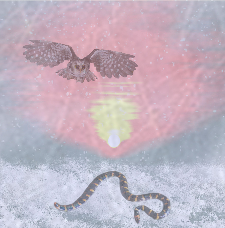 Owl and snake against snowy sunrise
